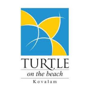 Turtle on the BeachProfile Picture
