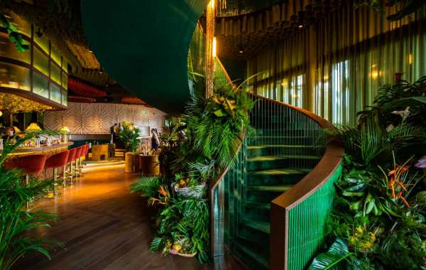 The Jungle Paradise Re-opens its Doors