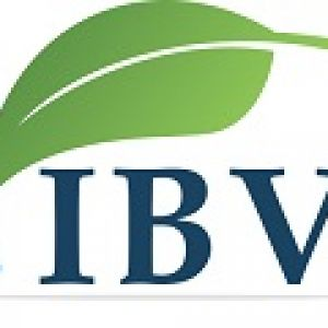 IBVProfile Picture