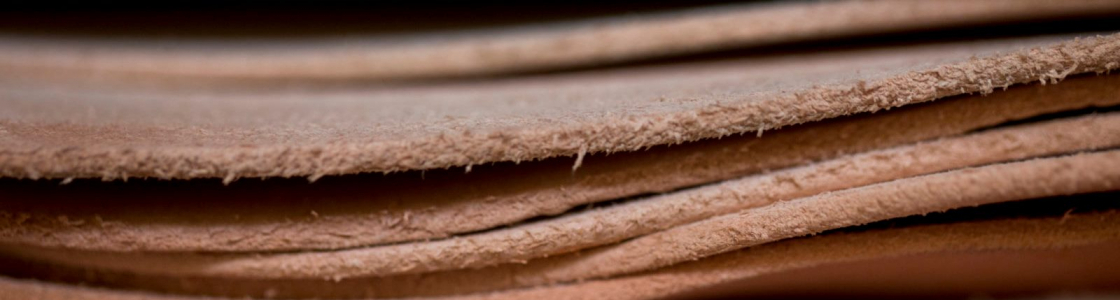 Eureka Leather Cover Image