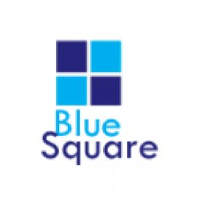 BLUE_SQUARE_GROUP_LTD Profile Picture