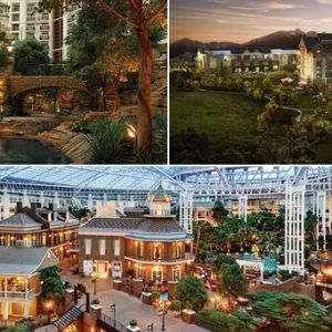 Gaylord HotelsProfile Picture