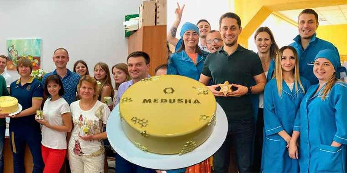 MEDUSHA LLC