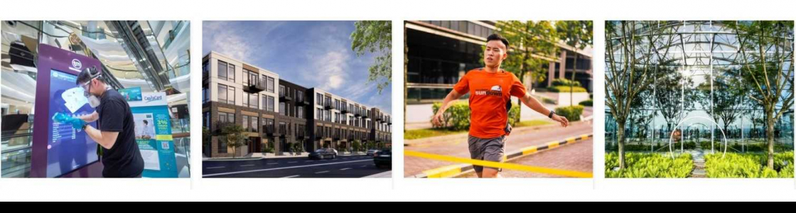 CapitaLand Limited Cover Image