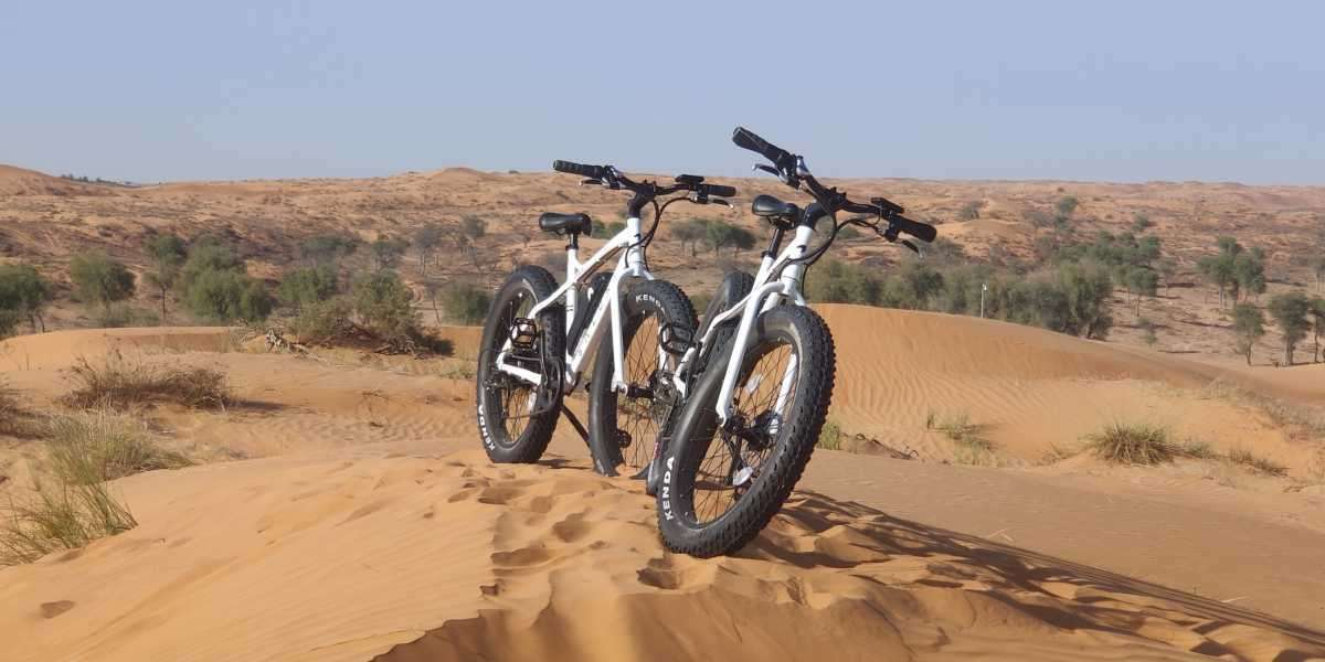 Take in the Desert Scenery and Conquer the Dunes on Your E Fat Bike at The Ritz-Carlton Ras Al Khaimah Al Wadi Desert