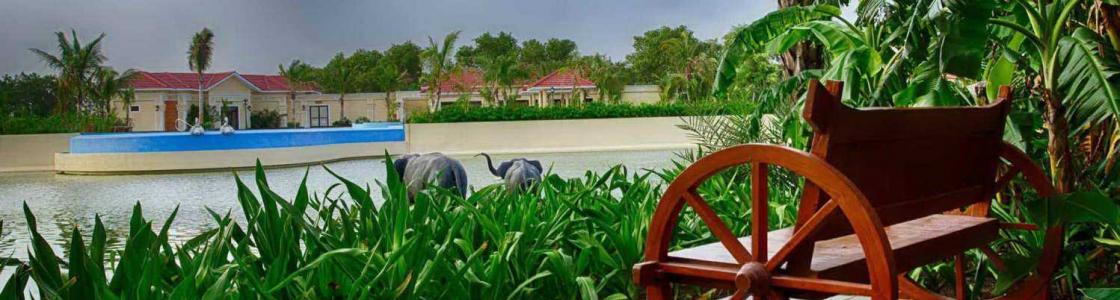 Regency Lagoon Resort & Convention Cover Image