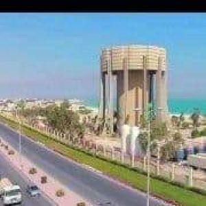 محمد سعدات Profile Picture