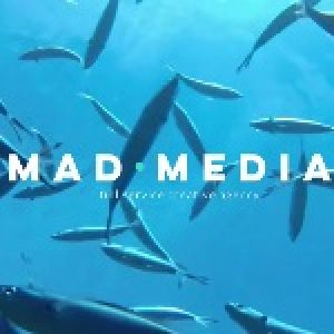 mad media prProfile Picture